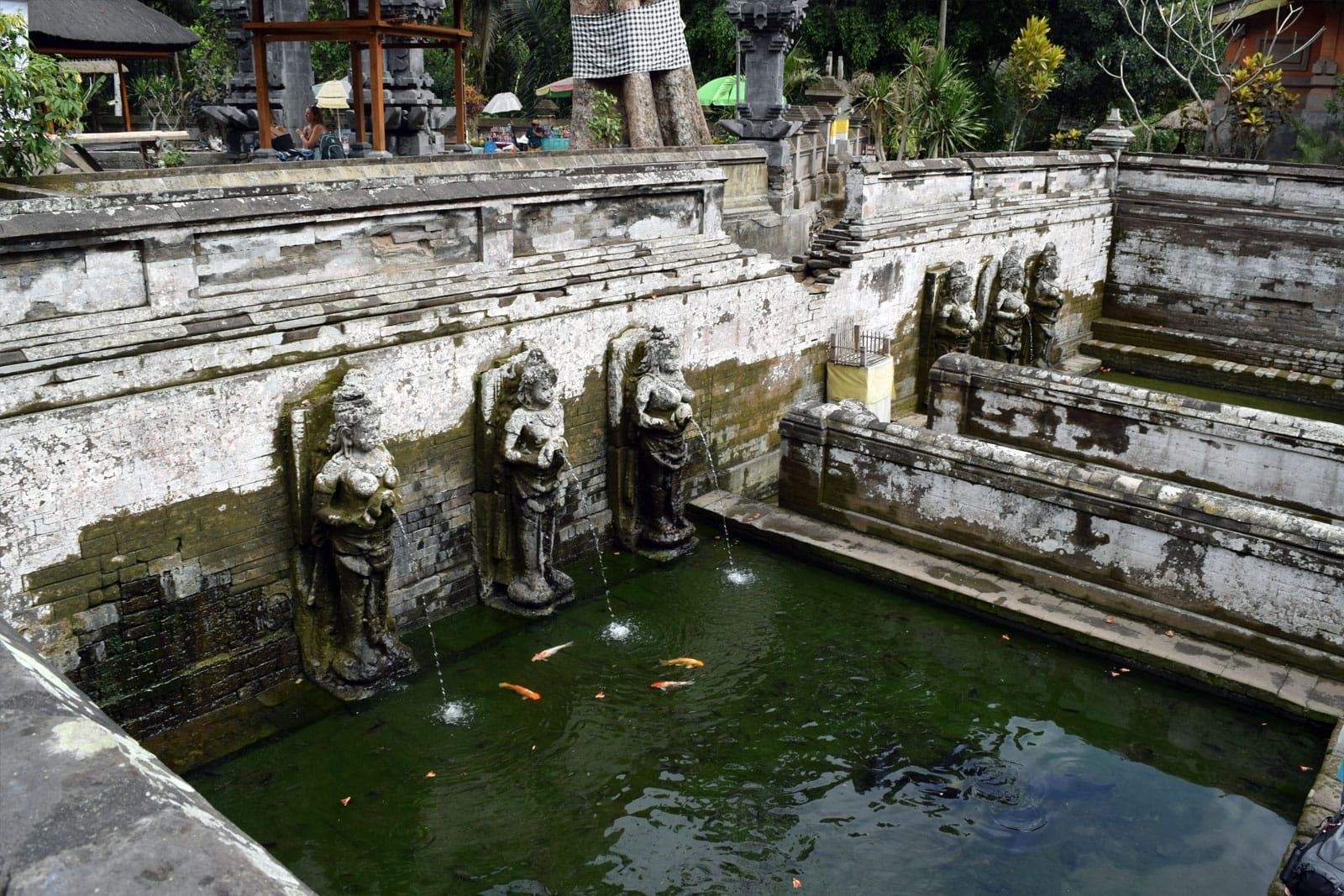 De badplaats van de olifantengrot