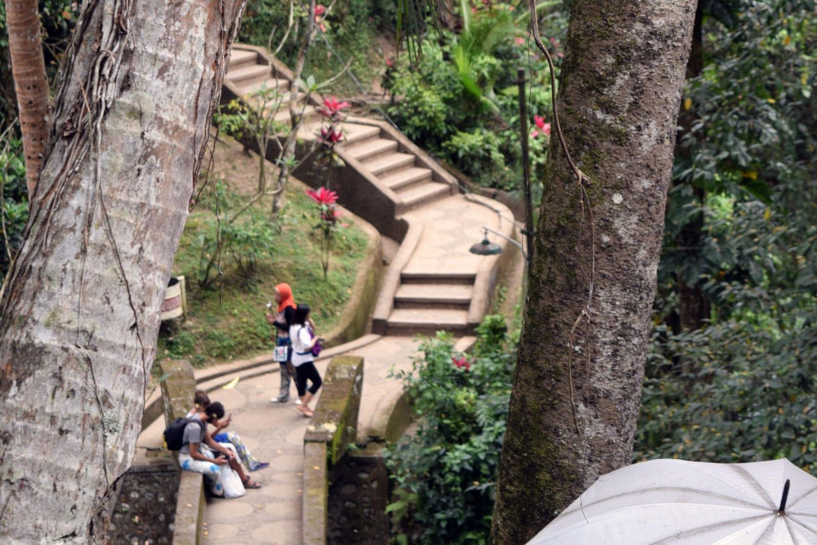 De trap richting het bos van de olifantengrot