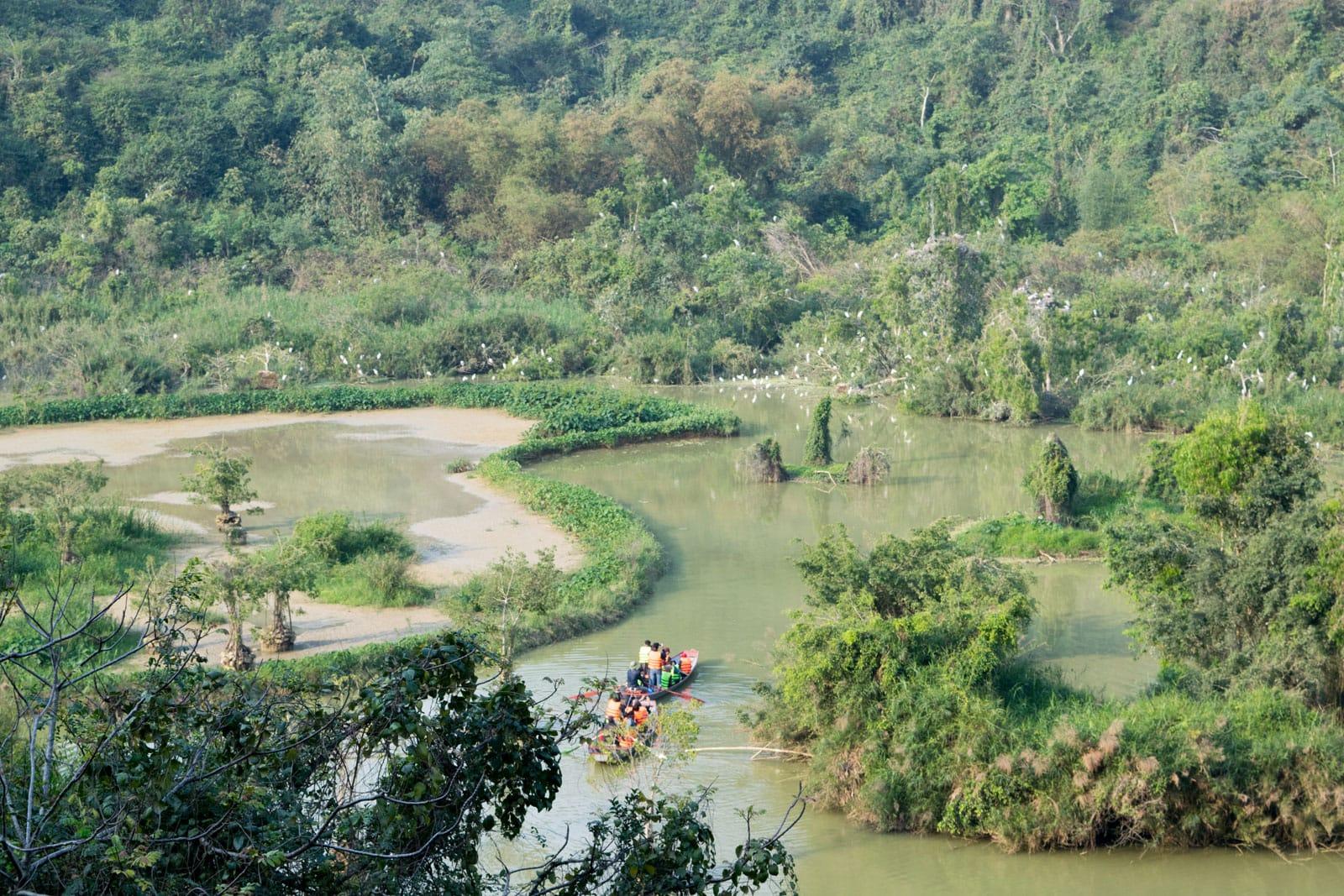 Ninh Binh - Bird Park