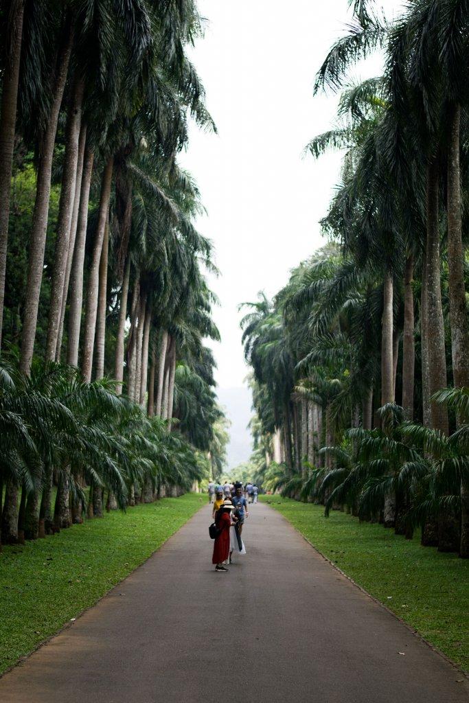 Botanische tuin Kandy