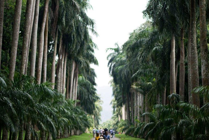 Bezoek Kandy Sri Lanka (bezienswaardigheden, eten en beste reistijd)