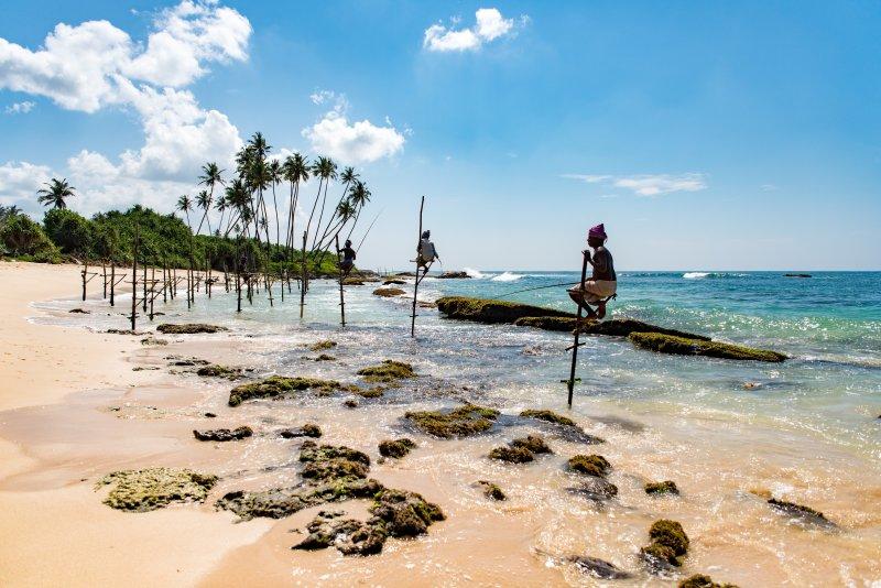 Wanneer reis jij het beste naar Sri Lanka? (de beste reistijd voor Sri Lanka)