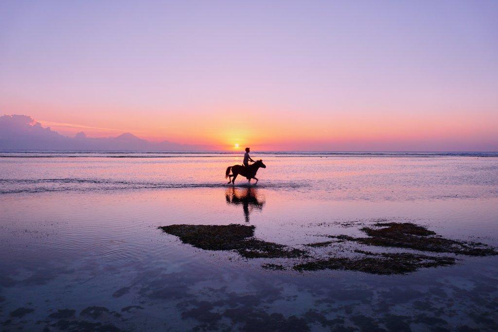 Paardrijden in Bali