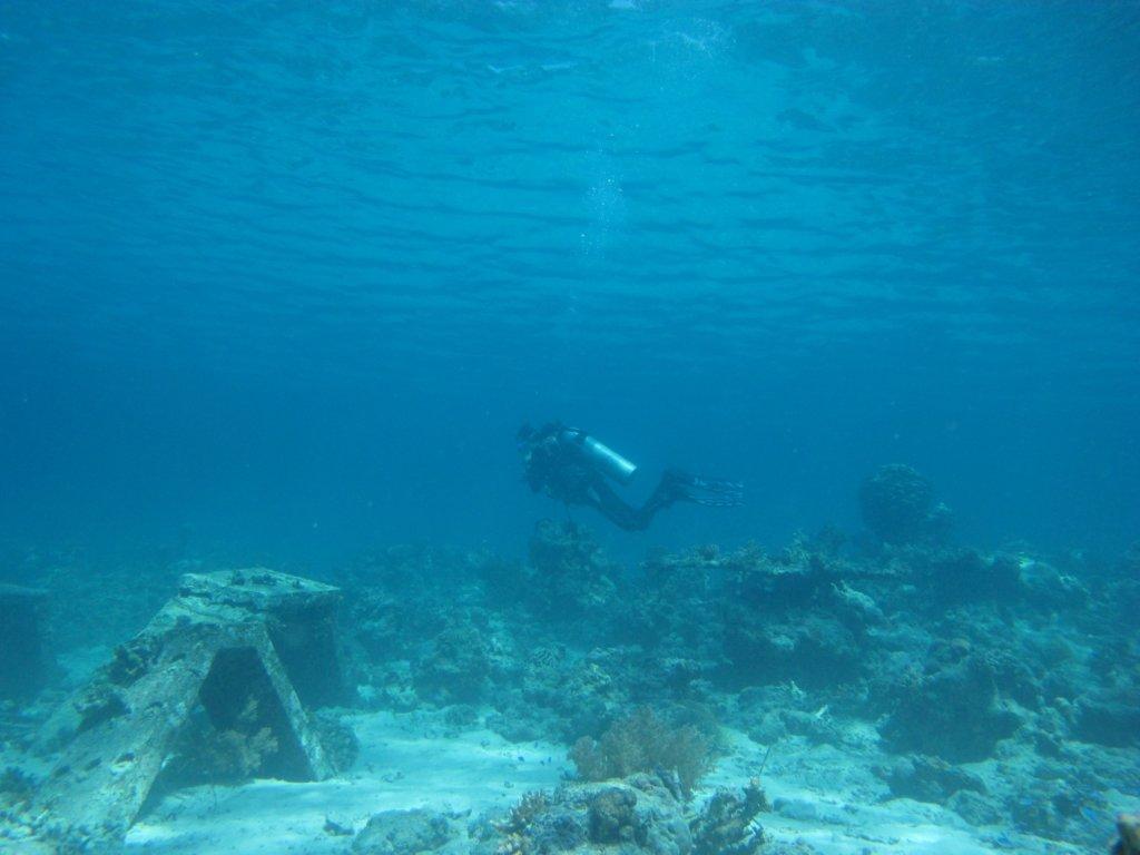 Bali duiken in Menjangan
