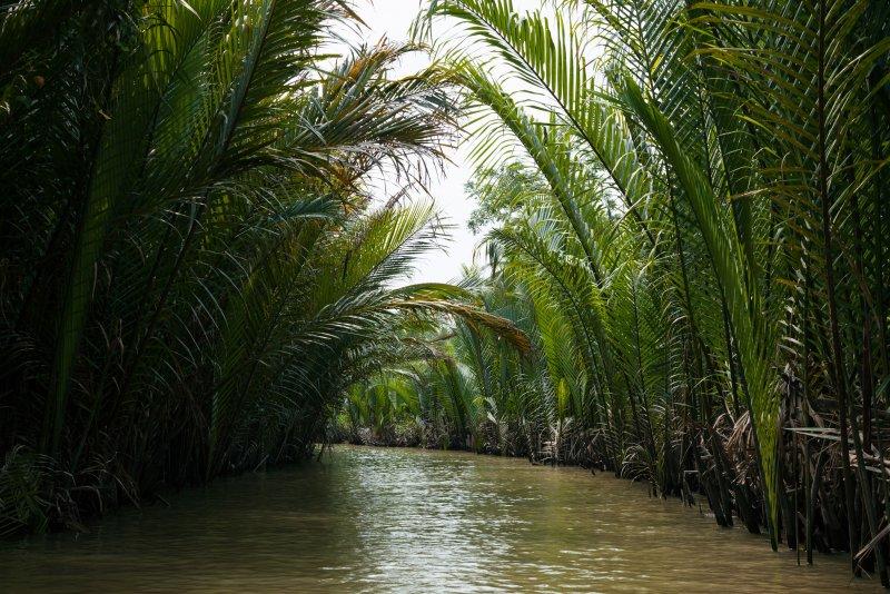 Mekong Delta in Vietnam (11 activiteiten en 2 reisroutes)