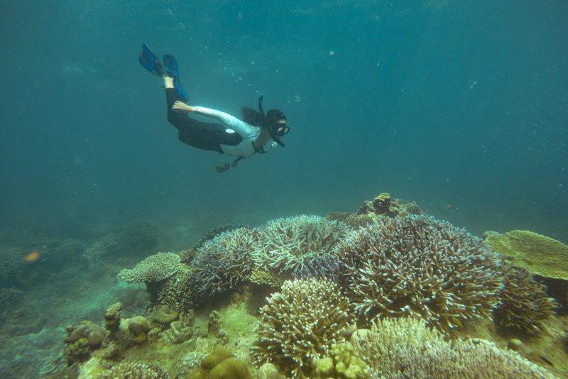 Snorkelen in Thailand (10 mooiste locaties, beste tijd en veiligheid)